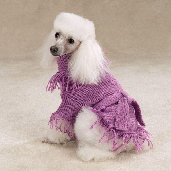 Dressed Animals (88 pics)