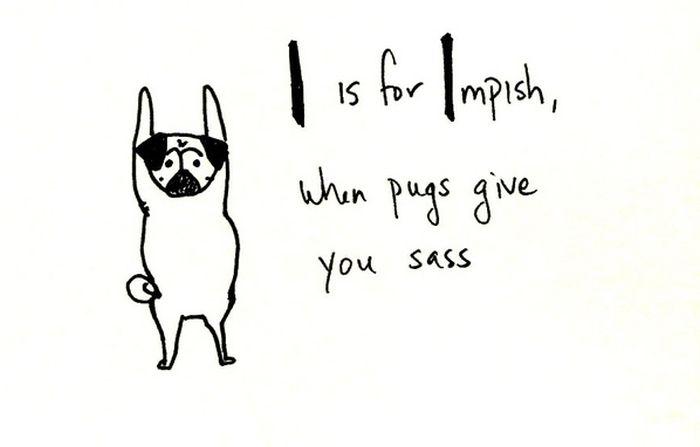 Pug Alphabets (26 pics)