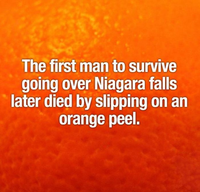 Interesting Facts (52 pics)