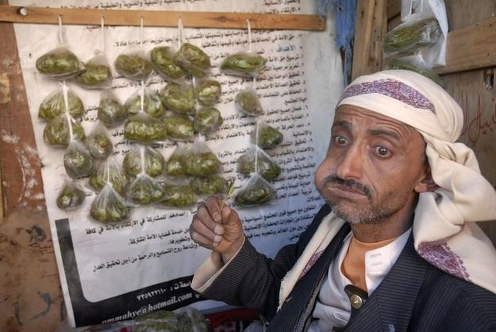 People Chewing Khat (15 pics)