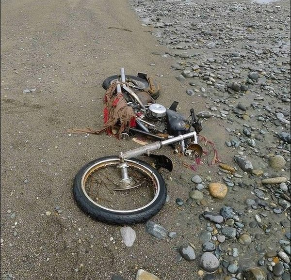 Harley Davidson Swept Away by Japan Tsunami Found in Canada (5 pics)