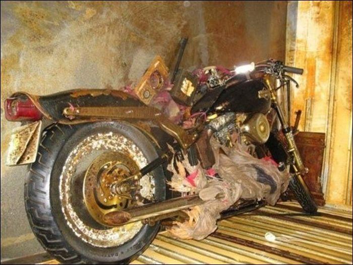 Harley Davidson Swept Away by Japan Tsunami Found in Canada (5 pics)