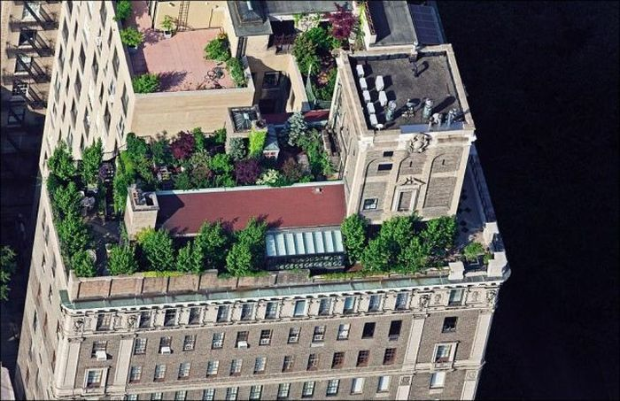 Rooftops of New York (15 pics)