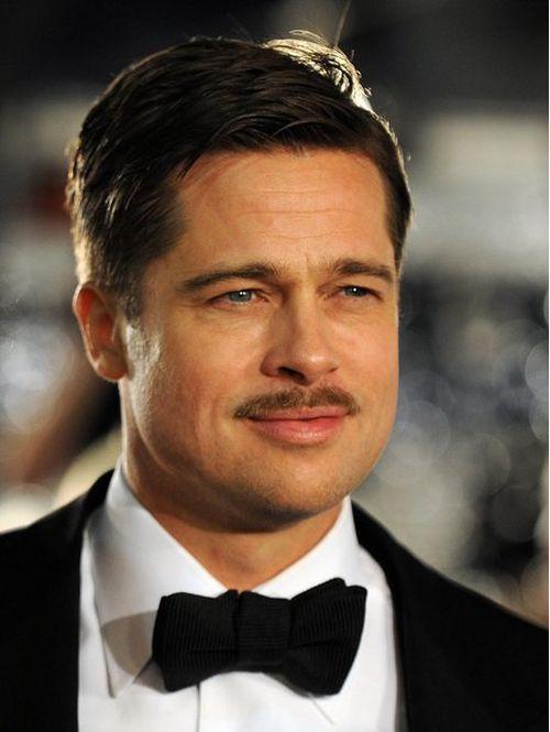 Brad Pitt Changing Styles (16 pics)