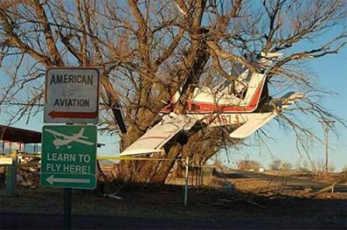 Funny Ironic Pictures (18 pics)