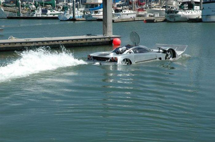 2012 Sea Lion (43 pics)