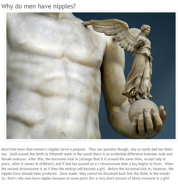 Interesting Facts about Human Body (8 pics)