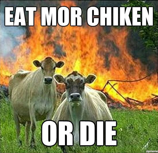 Evil Cows (17 pics)