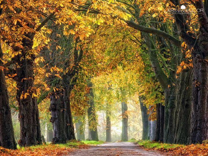 Beautiful Nature (101 pics)