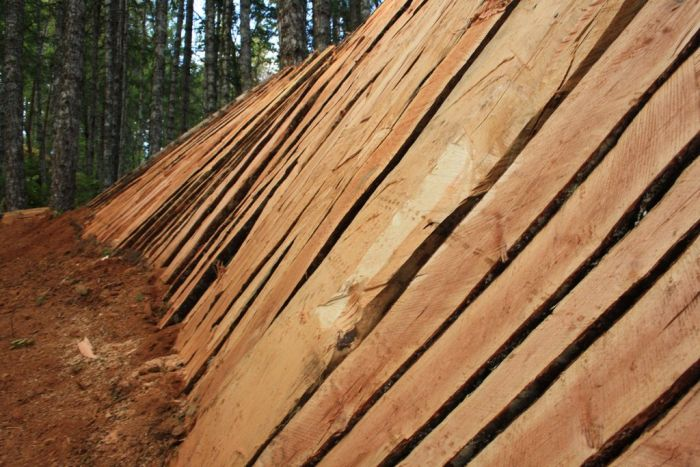 Trail Building (14 pics)