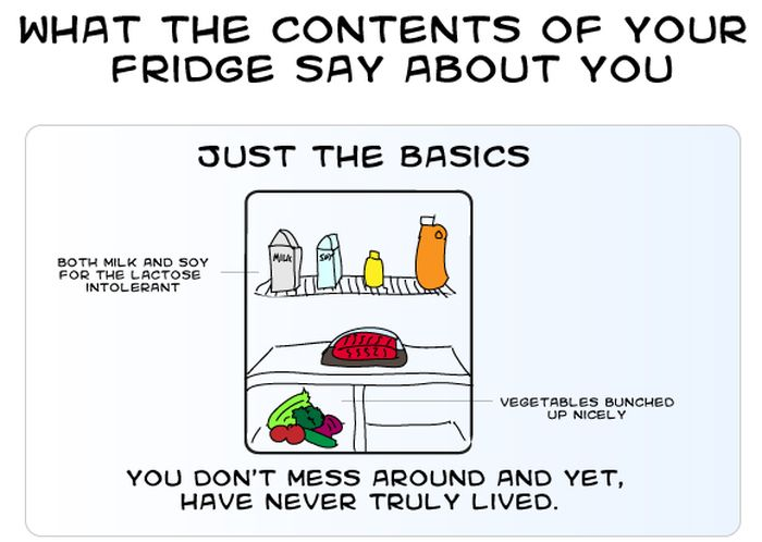 What the Contents of Your Fridge Say About You (9 pics)