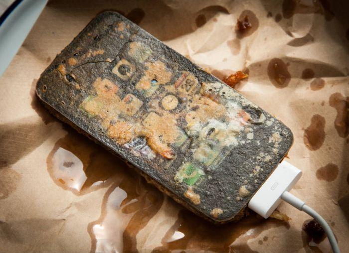 Deep Fried Gadgets (8 pics)