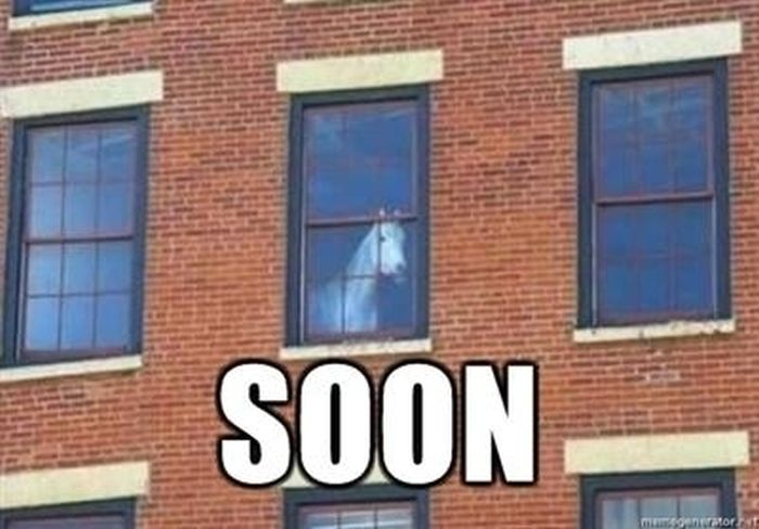 The Best of SOON (31 pics)