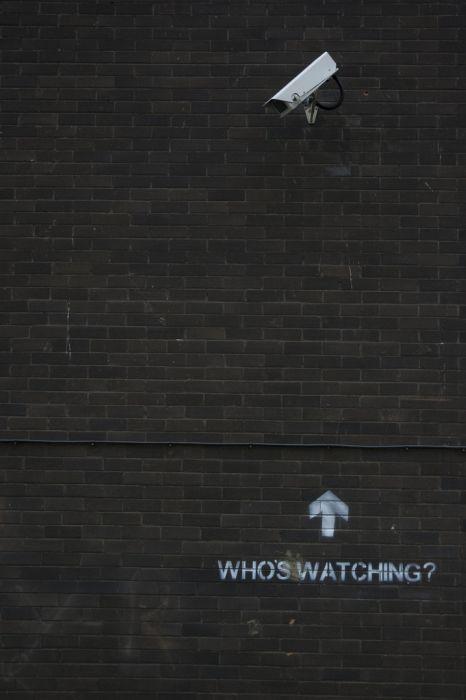 Sarcastic Street Art by Mobstr (30 pics)