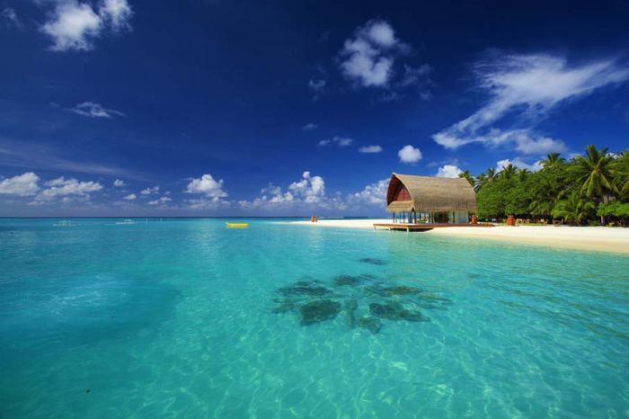 Beautiful Beaches (50 pics)