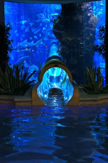 Cool Water Slides (34 pics)
