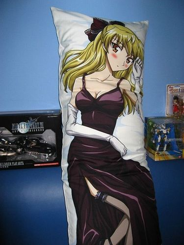 Japanese Love Pillows Dakimakura (28 pics)