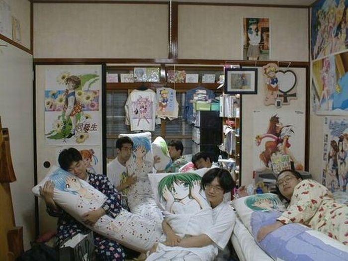 Japanese Love Pillows Dakimakura (28 pics)