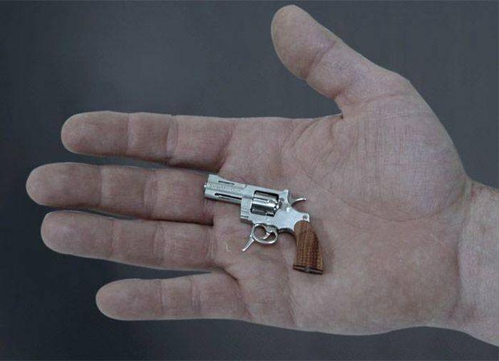 Just an Ordinary Gun? Not Quite (12 pics)