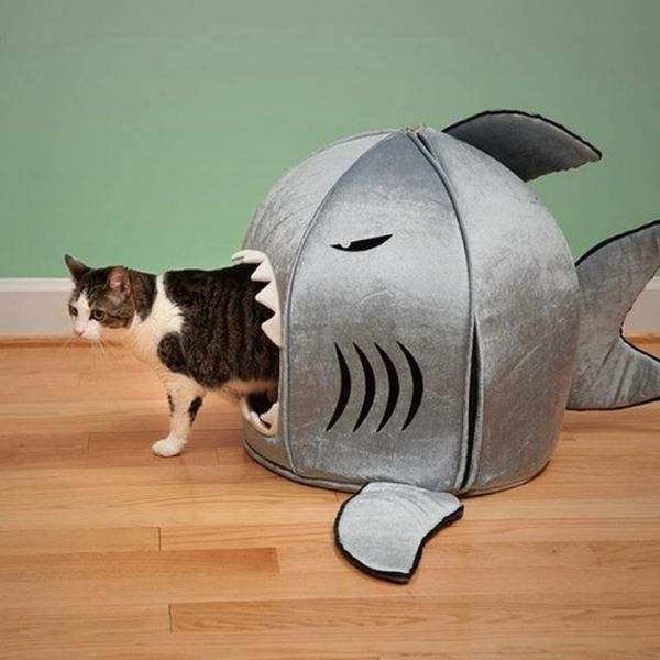 Furniture for Cats (33 pics)