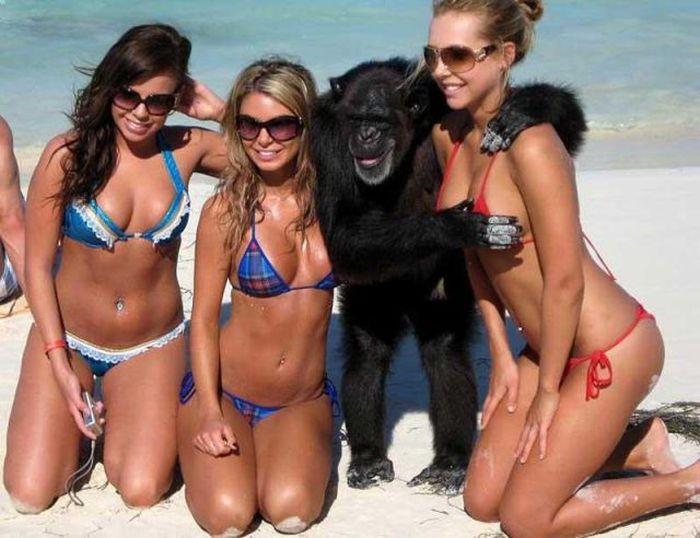 Funny Photos of Bikini Girls (59 pics)