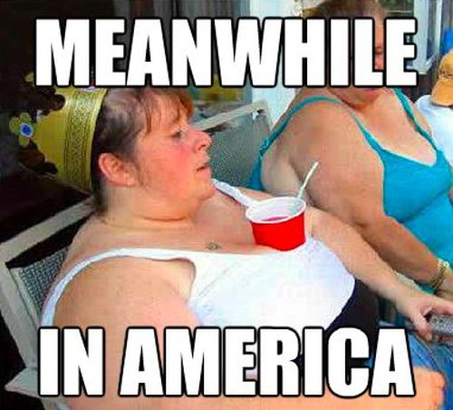 "The Best of ""Meanwhile, In America"" (45 pics)"
