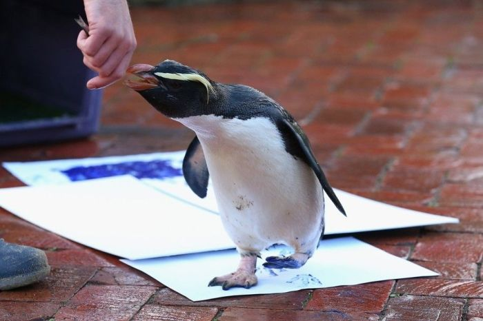 Animals Signing a Petition (9 pics)