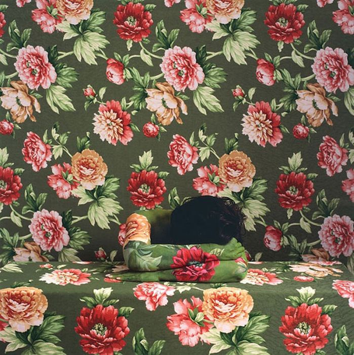 Invisible Woman (16 pics)