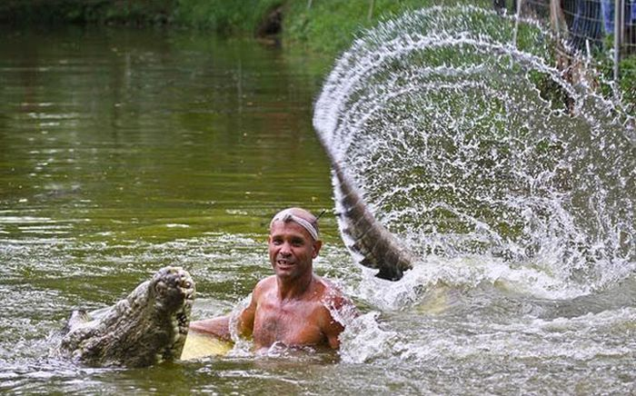 Pet Crocodile (5 pics)