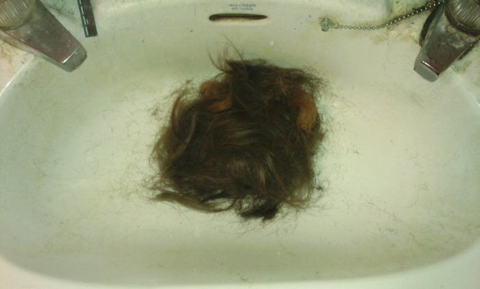 Time for a Shave (7 pics)