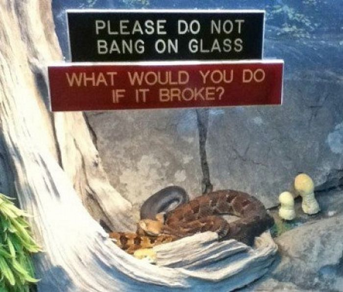 Funny Animal Signs (25 pics)