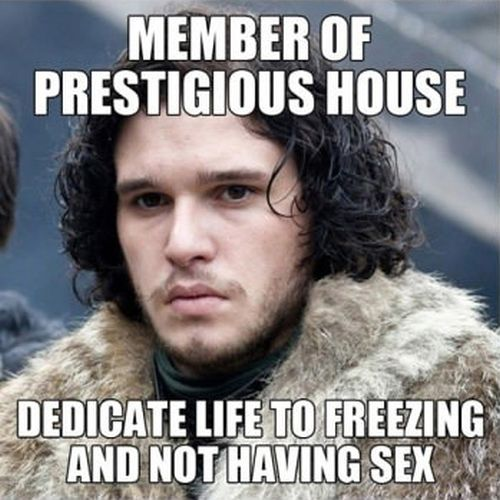 Game of Thrones Logic (8 pics)