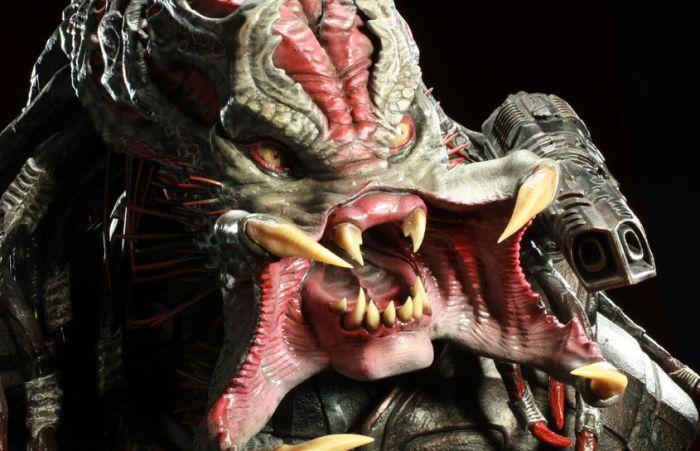 Awesome Predator (22 pics)