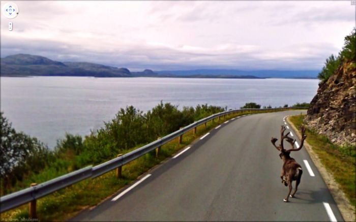 Interesting Things on Google Street View (47 pics)