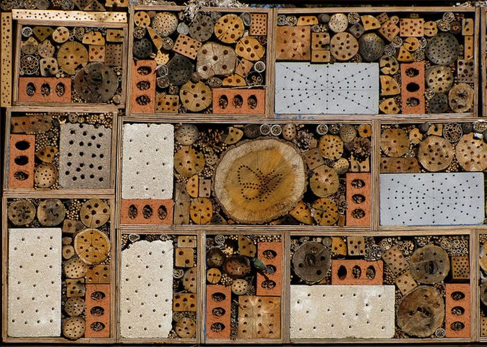 Bee Hotel in Paris (24 pics)