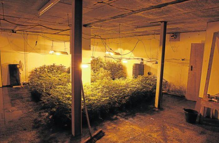 Police Found an Underground Bunker (3 pics)