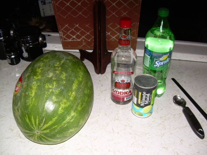 How to Make a Vodka Watermelon (9 pics)