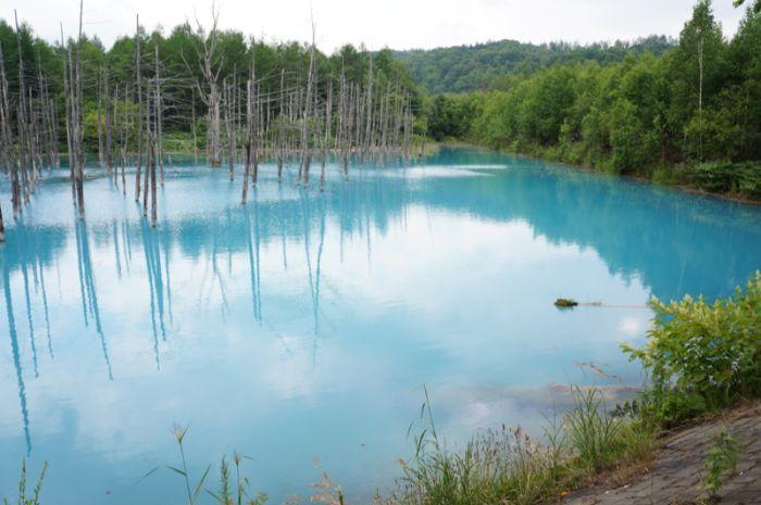 Blue pond hokkaido japan 37 pics for Blue pond dye