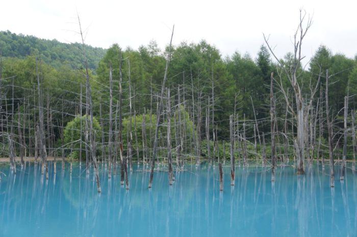 Blue Pond, Hokkaido, Japan (37 pics)