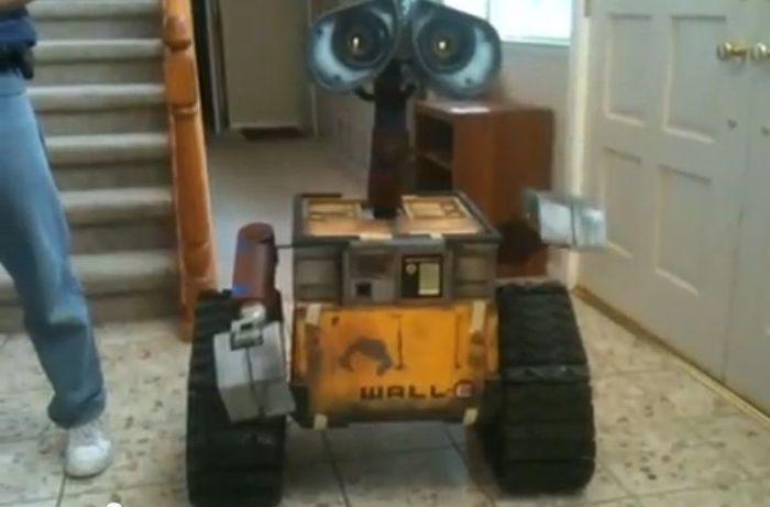 Real Life WALL-E (8 pics)