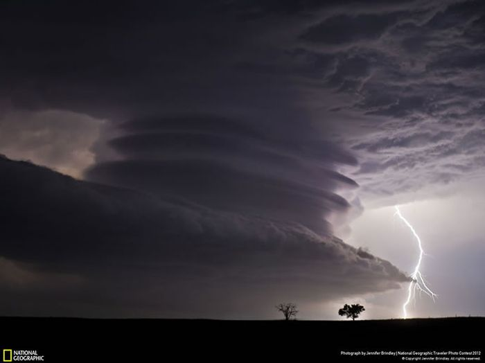 National Geographic Photo Contest (50 pics)