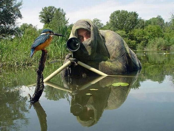 Awesome Photos. Part 2 (54 pics)