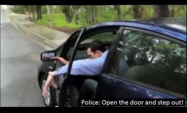 Troll Cops (10 pics)
