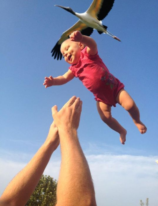 Perfectly Timed Photos (36 pics)