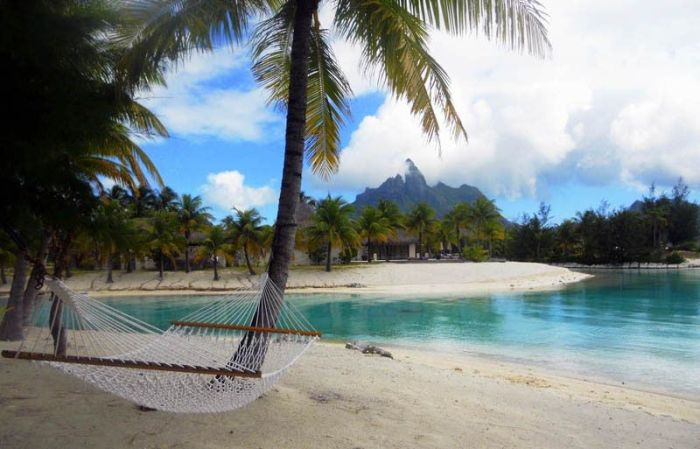 The Best Places for a Hammock (25 pics)