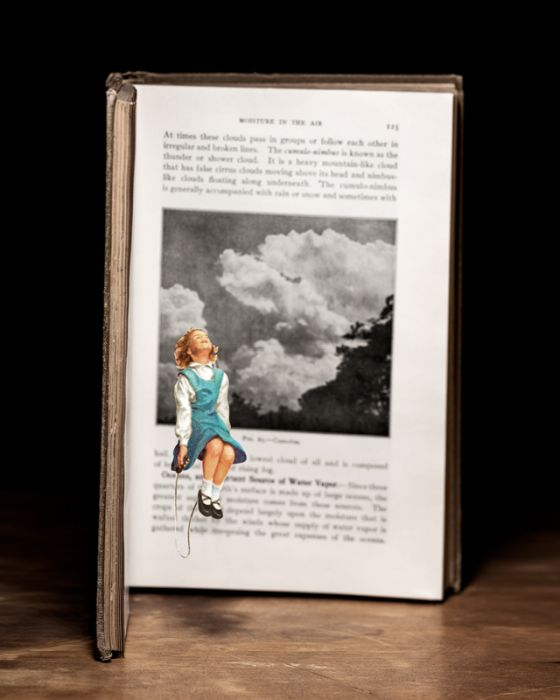 Carving by Thomas Allen (12 pics)