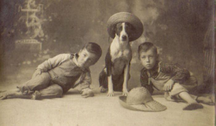 Awkward Vintage Photos Of Animals (30 pics)