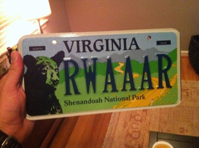 Funny License Plates (12 pics)