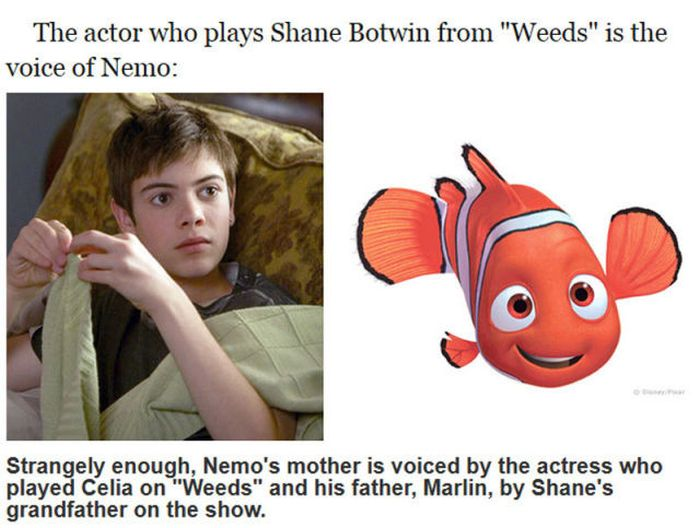 "Facts You Probably Didn't Know About ""Finding Nemo"" (24 pics)"