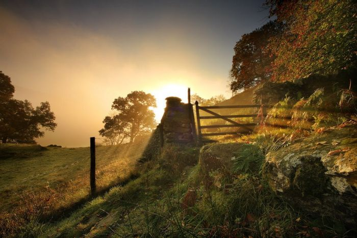 Beautiful Cheshire (31 pics)